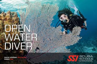 Open Water Diver Kursbuch